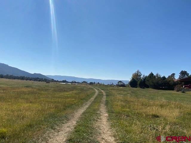TBD Road 40.5, Mancos, CO 81328 (MLS #775012) :: The Howe Group | Keller Williams Colorado West Realty