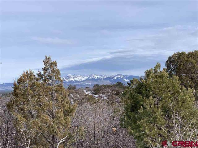 TBD Road P.2, Mancos, CO 81328 (MLS #777852) :: The Dawn Howe Group | Keller Williams Colorado West Realty