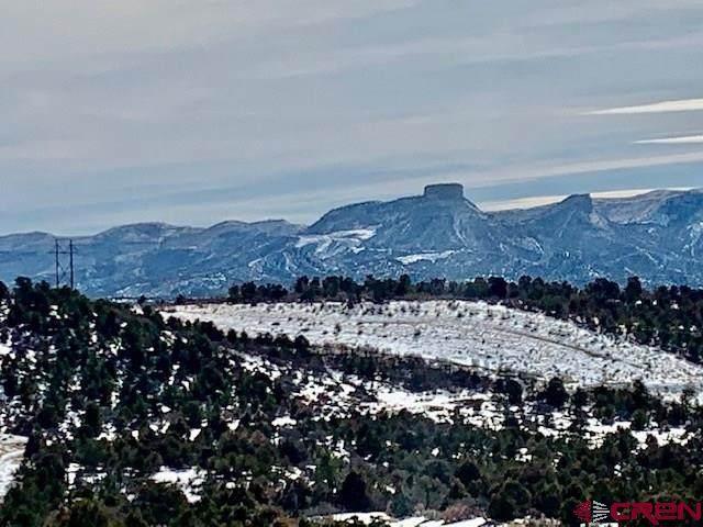 TBD Road 34.5 Lot C, Mancos, CO 81328 (MLS #778113) :: The Dawn Howe Group | Keller Williams Colorado West Realty