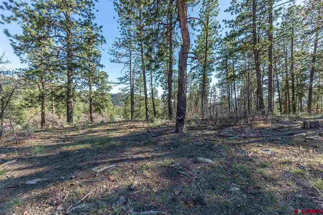 693 Red Canyon Trail - Photo 1
