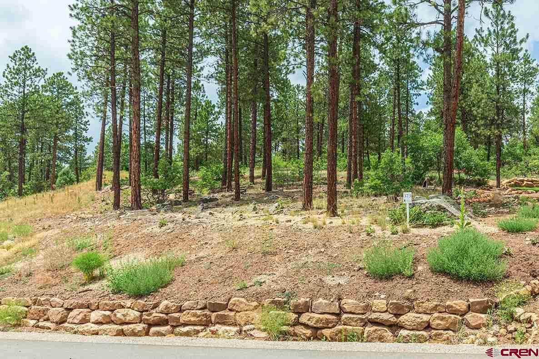 119 Cabin Creek Drive - Photo 1