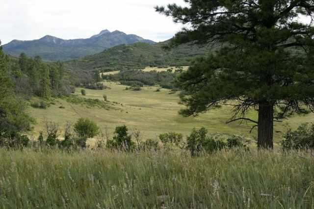 EPR_Lot12C Preservation Place, Pagosa Springs, CO 81147 (MLS #307035) :: Durango Home Sales