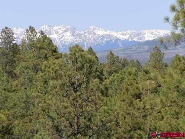 1362 Buckboard, Pagosa Springs, CO 81147 (MLS #683039) :: Durango Home Sales