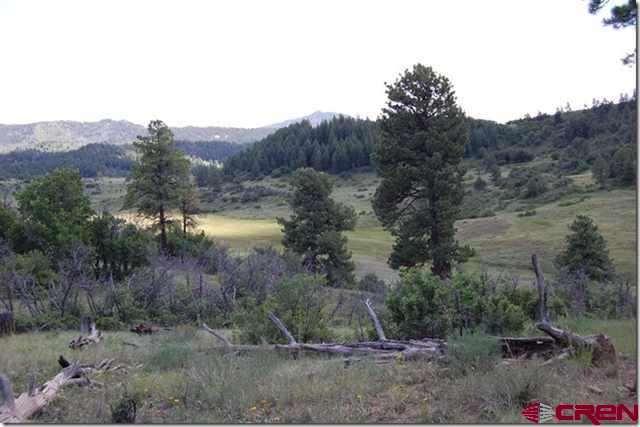 673 Spring Creek Cir, Pagosa Springs, CO 81128 (MLS #683040) :: The Dawn Howe Group   Keller Williams Colorado West Realty