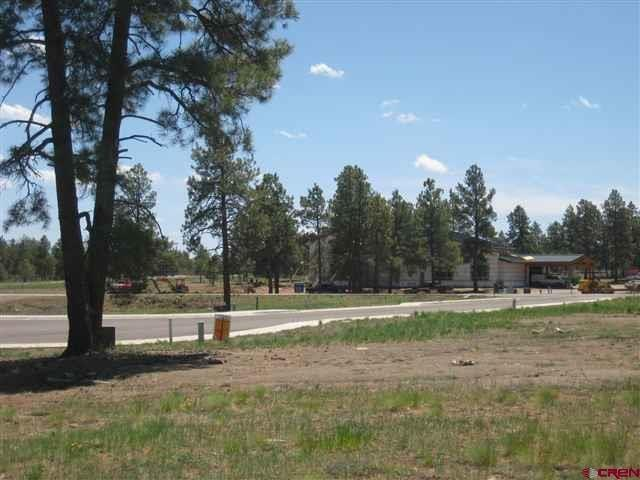 50 Papoose Court, Pagosa Springs, CO 81147 (MLS #697733) :: The Dawn Howe Group | Keller Williams Colorado West Realty