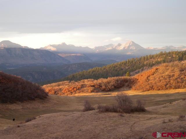 283 Thunder Mountain, Durango, CO 81301 (MLS #706316) :: Durango Mountain Realty