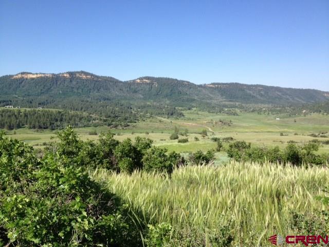 436 Irwin Pl, Chromo, CO 81128 (MLS #708517) :: Durango Home Sales