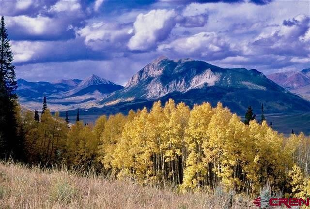 1742 Red Mountain Ranch Road, Crested Butte, CO 81224 (MLS #740920) :: CapRock Real Estate, LLC