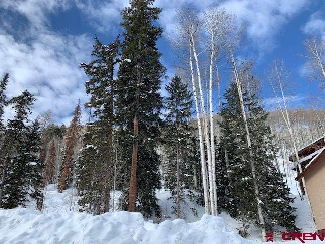 39 Double Diamond (Lot 12) Drive, Durango, CO 81301 (MLS #768286) :: Durango Mountain Realty