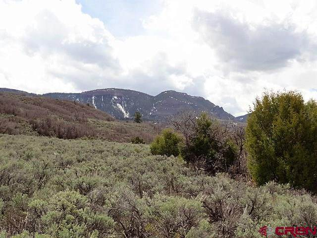 TBD 1 Little Cimarron Road, Cimarron, CO 81220 (MLS #768829) :: The Dawn Howe Group | Keller Williams Colorado West Realty