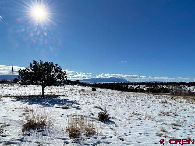 TBD Road 30.2, Dolores, CO 81323 (MLS #777683) :: The Dawn Howe Group | Keller Williams Colorado West Realty