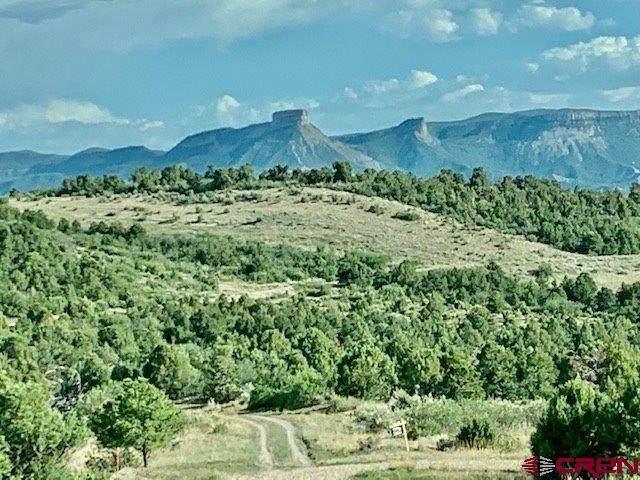 TBD Road 34.5 Lot C, Mancos, CO 81328 (MLS #778113) :: The Howe Group   Keller Williams Colorado West Realty