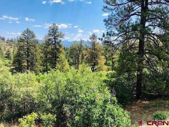 1099 Cool Pines Drive, Pagosa Springs, CO 81147 (MLS #781528) :: The Howe Group   Keller Williams Colorado West Realty