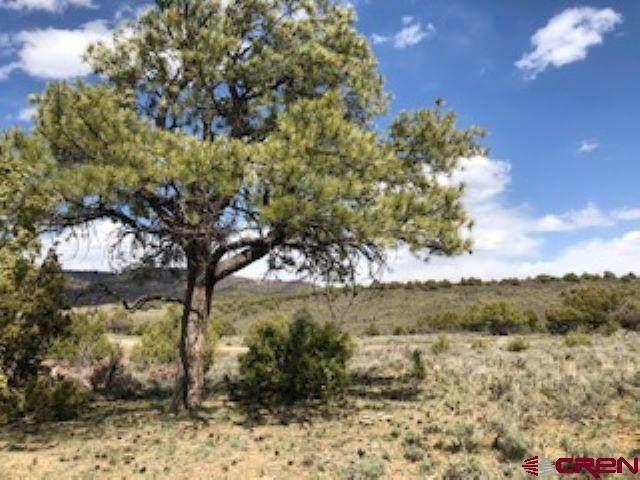 125 Archuleta Mesa, Pagosa Springs, CO 81147 (MLS #761168) :: The Howe Group | Keller Williams Colorado West Realty