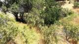 9623 Oak Bend Drive - Photo 3