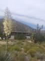 11046 Juniper Hills Road - Photo 13