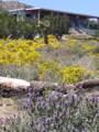 11046 Juniper Hills Road - Photo 10