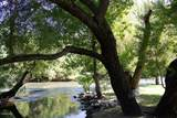 11319 Choctaw Drive - Photo 35