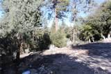 1825 Bernina Drive - Photo 5
