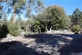 1825 Bernina Drive - Photo 7