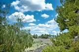 155 Acacia Lane - Photo 38