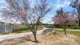 30792 Carriage Hill Drive - Photo 17