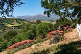 250 Verde Oak Drive - Photo 45