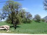 29100 Horsethief Drive - Photo 8