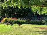 4648 Park Granada - Photo 12