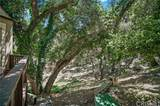 3445 Old Topanga Canyon Road - Photo 37