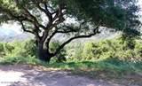 260 Running Ridge Trail - Photo 45