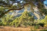 260 Running Ridge Trail - Photo 49
