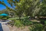 30633 Colt Road - Photo 40