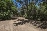 30633 Colt Road - Photo 50