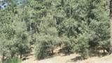 2000 Ironwood Drive - Photo 7