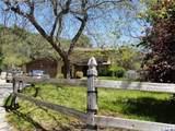 10252 Haines Canyon Avenue - Photo 1