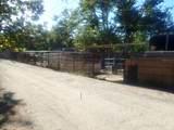 8634 Nye Road - Photo 15