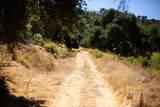 Sulphur Mountain Road - Photo 7