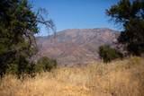 Sulphur Mountain Road - Photo 9