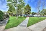 447 Reed Way - Photo 36
