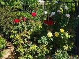 382 Southridge Drive - Photo 21