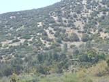 0 Vac/Juniper Hills Rd/Vic 121 S - Photo 10