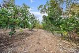 10401 Presilla Road - Photo 43