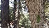 1412 Banff Drive - Photo 1
