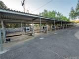 30905 Burlwood Drive - Photo 67