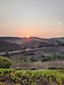 3876 Sunset Knolls Drive - Photo 2
