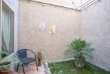 778 Via Colinas - Photo 11