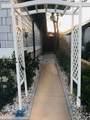 31935 Cinnabar Lane - Photo 21