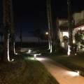 2317 Martinique Lane - Photo 35
