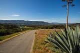 3191 Ladera Road - Photo 38